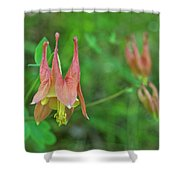 Wild Columbine Shower Curtain