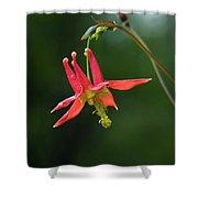 Wild Columbine Wildflower Shower Curtain