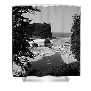 Wild Cove Shower Curtain