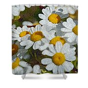 Wild Daisies II Shower Curtain