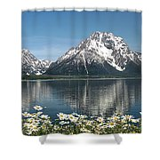 Wild Daisies In The Tetons Shower Curtain