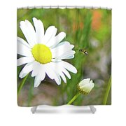 Wild Daisy With Visitor Shower Curtain