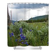 Wild Delphinium Shower Curtain