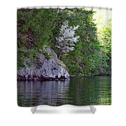 Wild Dogwood Shower Curtain