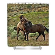 Wild Domination Shower Curtain