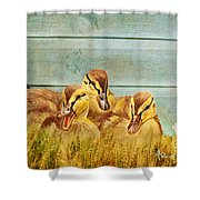 Wild Ducklings Shower Curtain