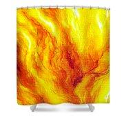 Wild Fire 03 Shower Curtain