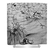Wild Flora And Dunes Shower Curtain