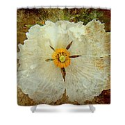 Ivory White Wildflower  Shower Curtain