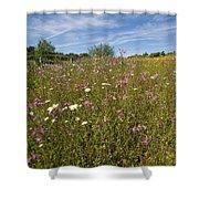 Wild Flower Meadow Shower Curtain