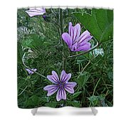 Wild Flowers 2 Shower Curtain