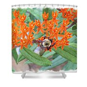 Wild Flowers And Bumble Bees Shower Curtain