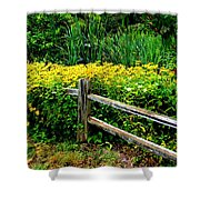 Wild Flowers And Fence Shower Curtain