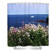 Wild Flowers And Iceberg Shower Curtain
