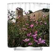 Wild Flowers At The Old Fortress Shower Curtain