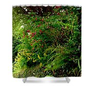 Wild Flowers On The Cliff Path Shower Curtain
