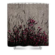 Wild Flowers On The Wall Shower Curtain