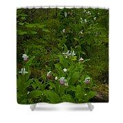 Wild Garden #2 Shower Curtain