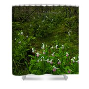 Wild Garden #3 Shower Curtain
