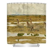 Wild Geese In The Marsh Shower Curtain