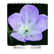 Wild Geranium 2 Shower Curtain