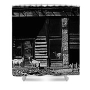 Wild Goats Ghost Town White Oaks New Mexico 1968 Shower Curtain
