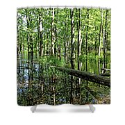 Wild Goose Woods Pond II Shower Curtain