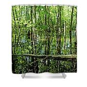 Wild Goose Woods Pond Iv Shower Curtain