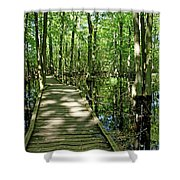 Wild Goose Woods Pond Vi Shower Curtain