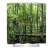 Wild Goose Woods Pond Vii Shower Curtain