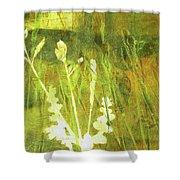 Wild Grass 7 Shower Curtain