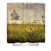 Wild Grass And A Lonely Cloud Shower Curtain