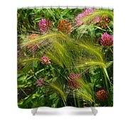 Wild Grasses And Red Clover Shower Curtain