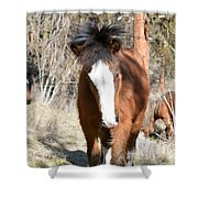 Wild Hair Shower Curtain