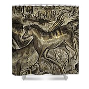 Wild Horse Cavern Shower Curtain