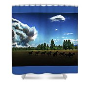 Wild Horse Fire Shower Curtain
