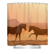 Wild Horse Glow Shower Curtain by Wesley Aston
