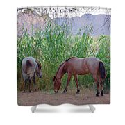 Wild Horses At Twilight Shower Curtain