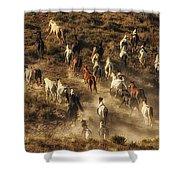Wild Horses Gone Wild Shower Curtain
