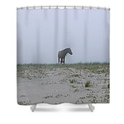 Wild Horses In The Sand Dunes On Sable Shower Curtain