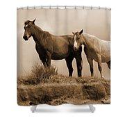 Wild Horses In Western Dakota Shower Curtain