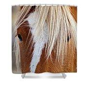 Wild Horses In Wyoming Shower Curtain