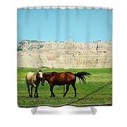 Wild Horses Of South Dakota Shower Curtain