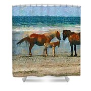 Wild Horses Of The Outer Banks Shower Curtain