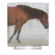 Wild Horses On The Beach 2 Shower Curtain