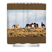 Wild Horses On The Bisti Shower Curtain