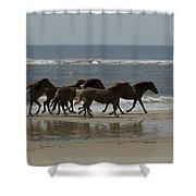 Wild  Horses Run On The Beach Shower Curtain
