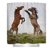 Wild Horse Challenge Shower Curtain