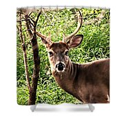 Wild In The Country Shower Curtain