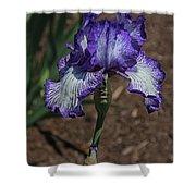 Wild Iris Ridge Shower Curtain
